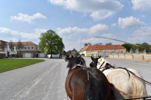ab4e27ab39 Špeciálny program pre slovenských návštevníkov na zámku Schloss Hof 8.mája  2019